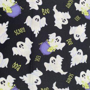 Scary Spooks